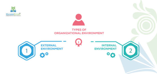 internal environment of an organisation