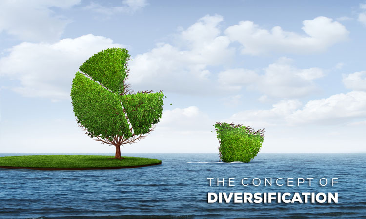 what is diversification levels of diversification examples